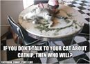 Abraham E LaBonte shared The Catnip Times's photo.